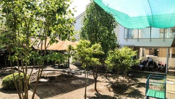 羽村 市 保育園